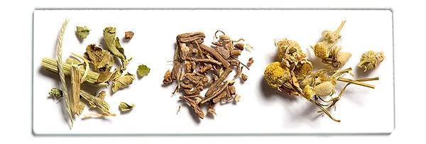 Ingredient-Slide-2.jpg