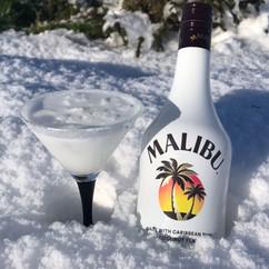 malibu on ice.jpg