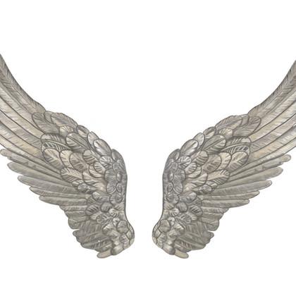 angel wings pair white background.jpg