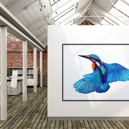 Kingfisher in office
