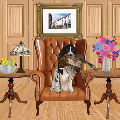 Spaniel in panelled room