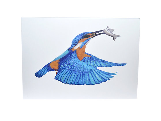 Illustrated greeting card - Kingfisher with Fish