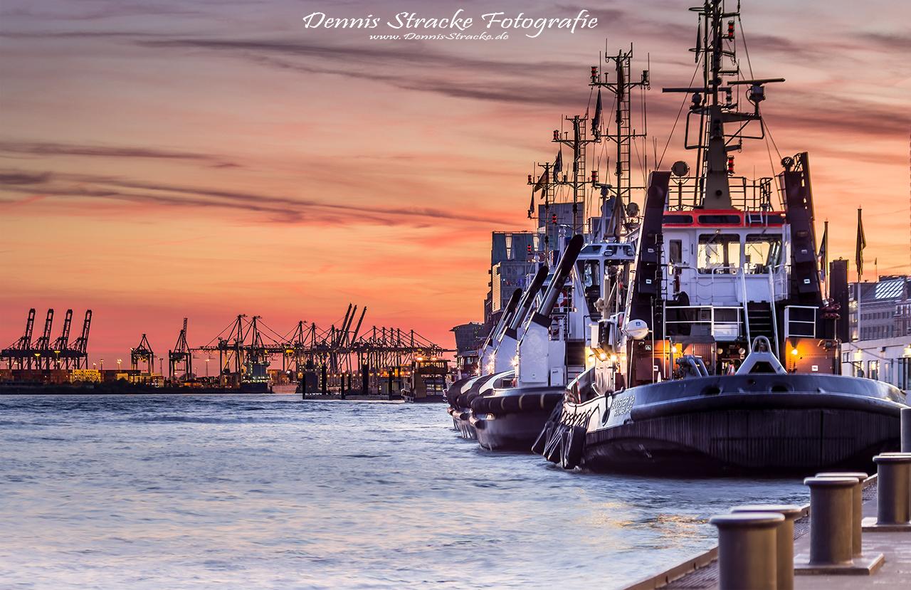 Abends im Hafen Hamburg
