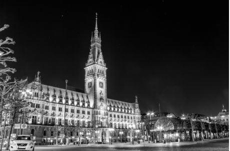 Hamburg Rathaus Wanddekoshop