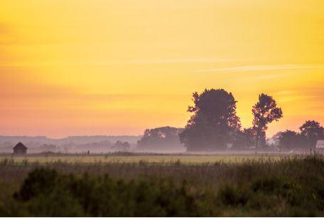Sonnenaufgang auf dem Acker