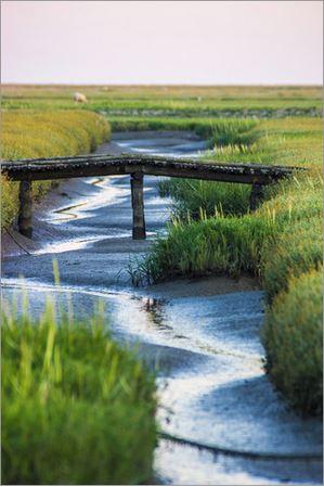 Die Brücke übern Priel