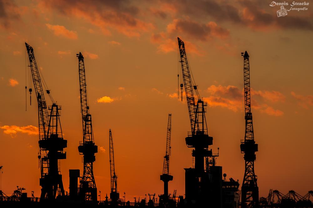 Kran Silhouette Hamburger Hafen