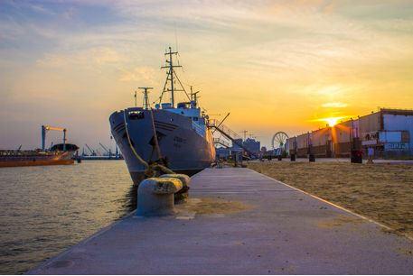 MS Stubniz im Hamburger Hafen