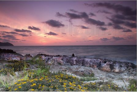 Sonnenaufgang Cala Bona Mallorca