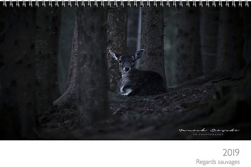 Calendrier 2019 Regards Sauvage