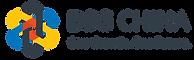BSG China Logo (가로).png