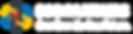 BSG Logo - BSG Partners (10).png