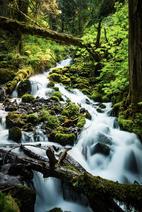 Little Wahkeena Falls