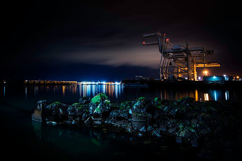Cranes at Night