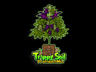 Logo Animation - Trippy Soil.mp4