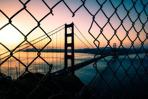 Golden Morning Fence Shot