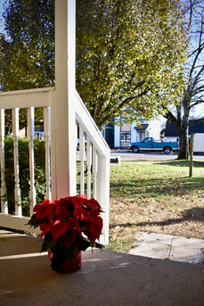 Poinsetta on porch