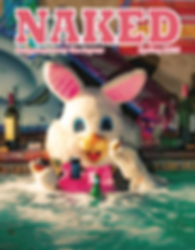NAKED 13 cover.png