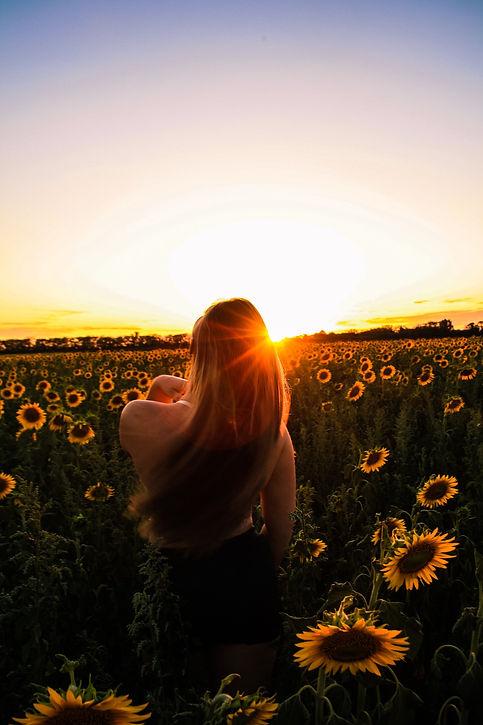 sunflower-5436991_1920.jpg