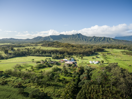 Pacific Business News Article: Kauai's new Food Innovation Center aims to grow local food economy