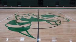 Logo - Hornets - Mansfield High School - Mansfield MA.JPG