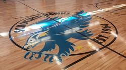 Logo - Hawks.JPG