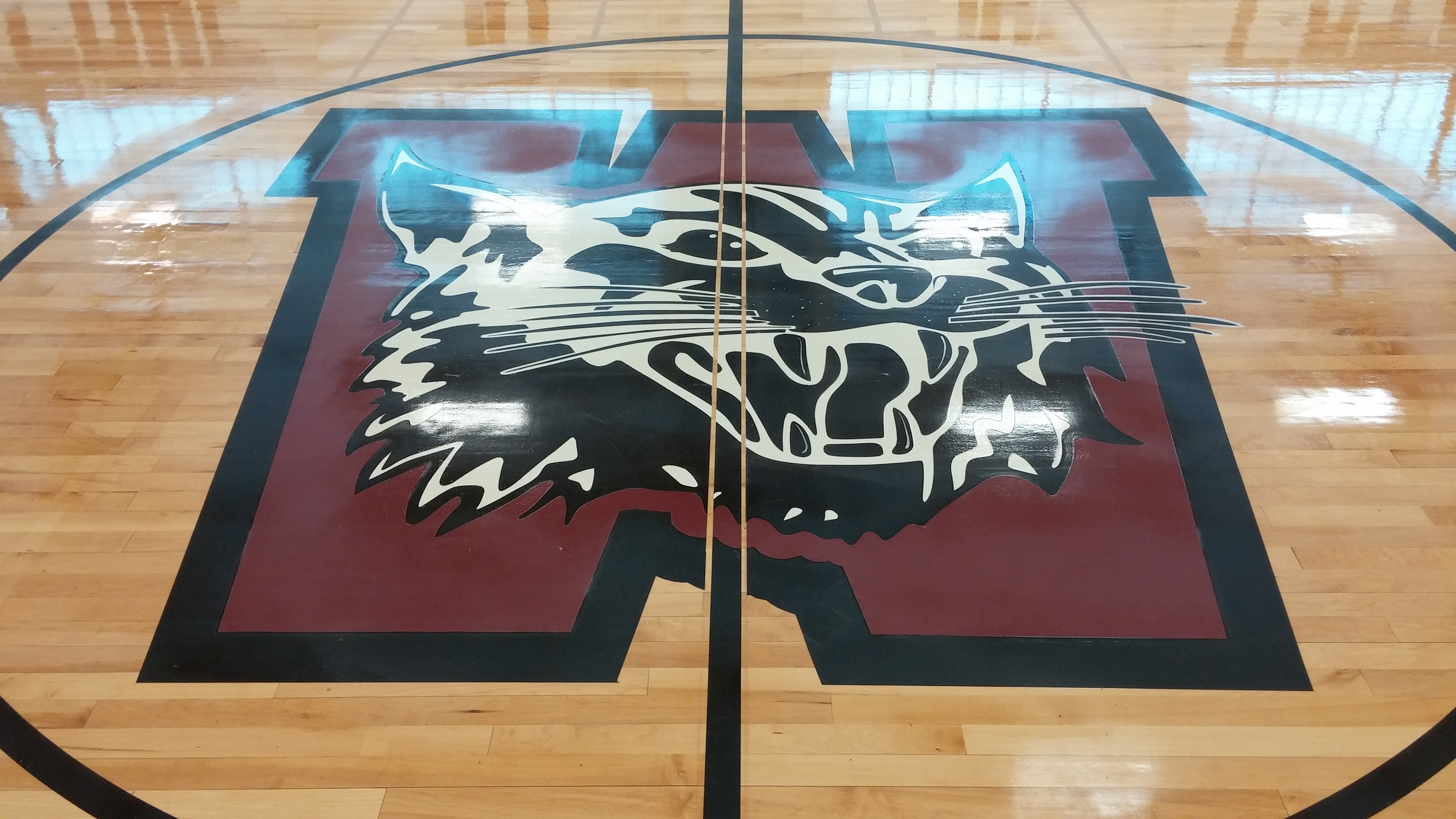 Logo - Wildcat - Weston High School - Weston MA.JPG