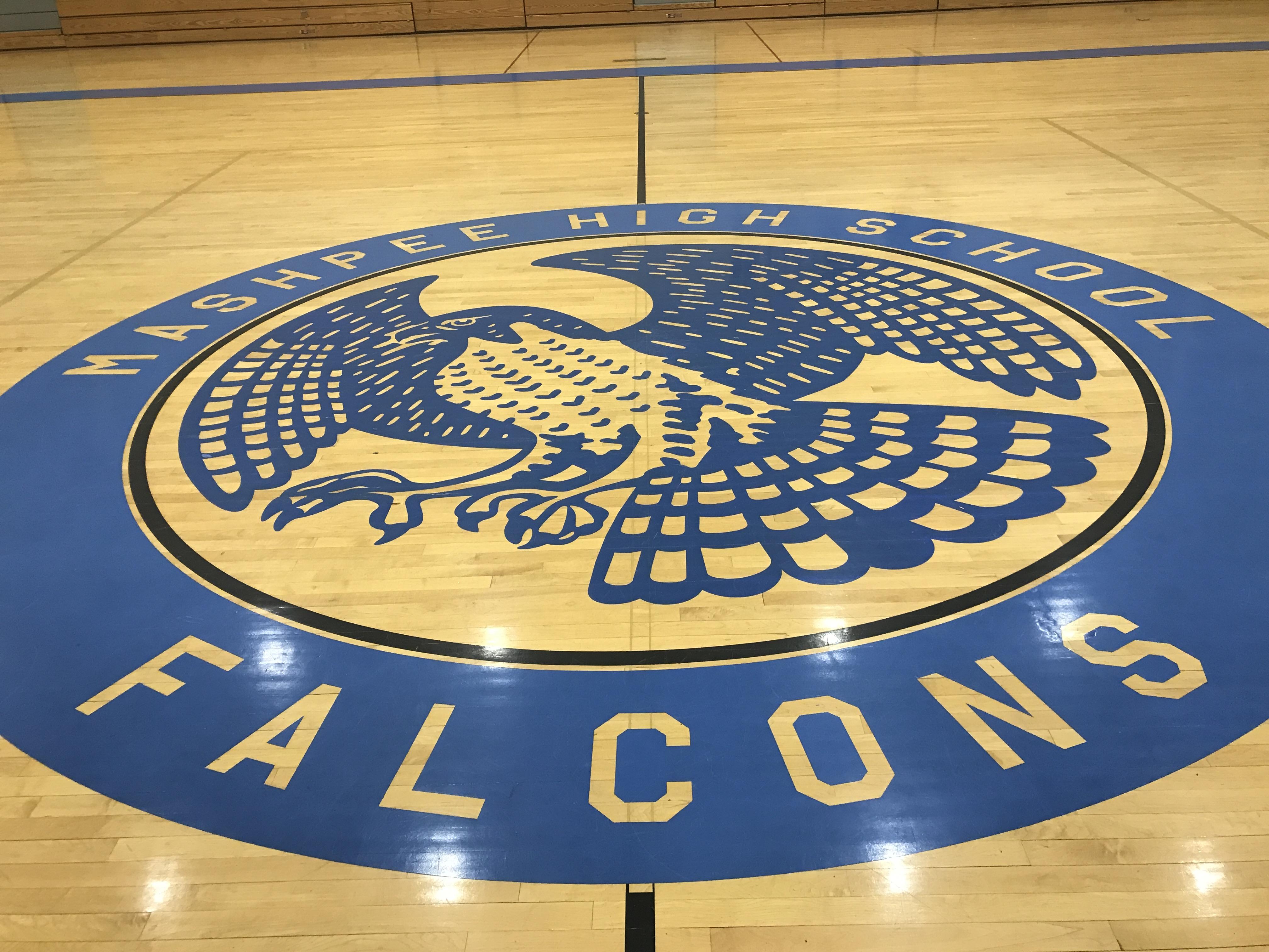 Logo - Falcon - Mashpee High School - Mashpee MA.JPG