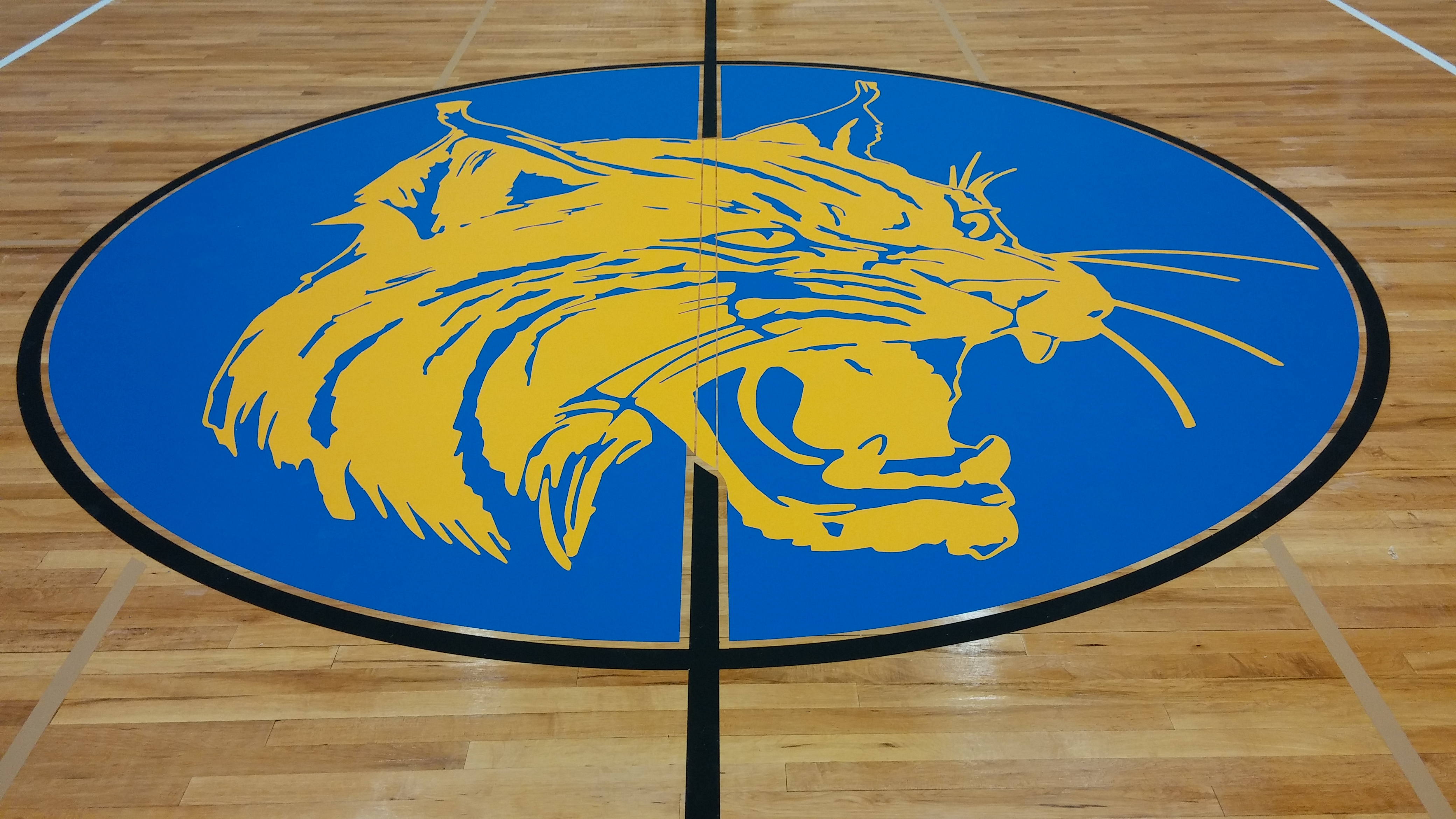 Logo - Wildcat - Brookfield CT.JPG