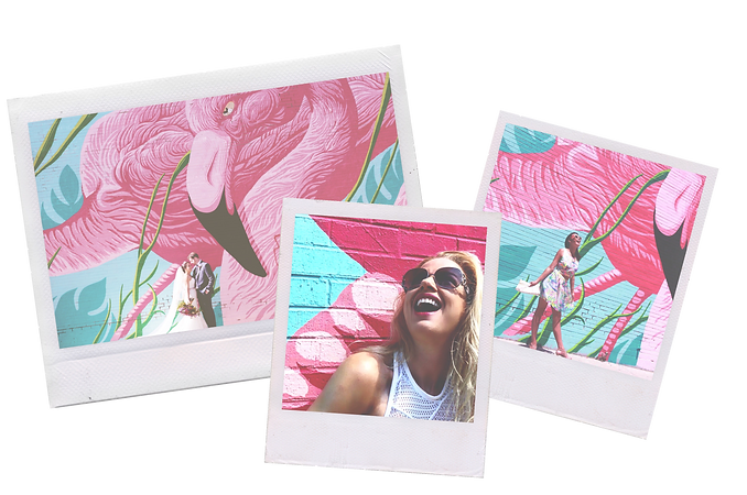 flamingo mural 2.PNG