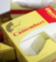 Queso Camembert