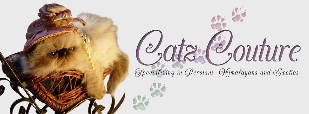 catzcouture header  agenda king.png