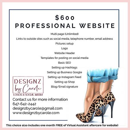 $600 PROFESSIONAL WEBSITE.png