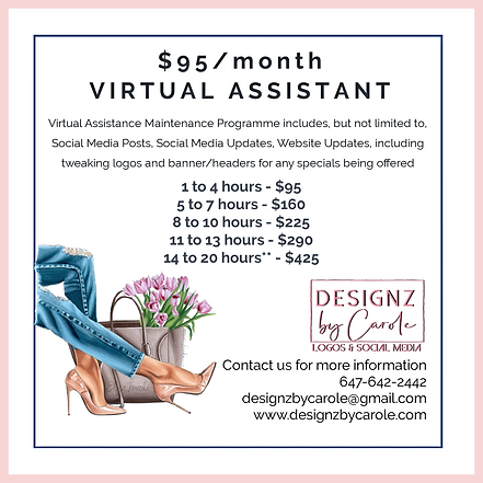 $95 MONTH VIRTUAL ASSISTANT.png