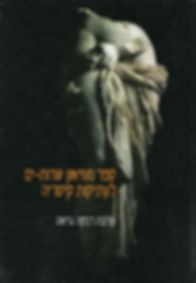 ספר מוזיאון שדות ים לעתיקות קיסריה רבקה גרשט