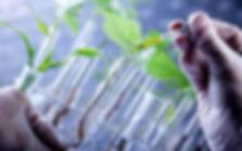 biotech-647_123115115942.jpg