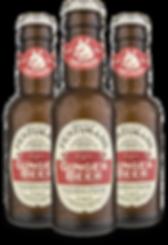 Ginger Beer.png