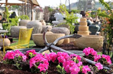 כדים עוגן לגינה