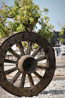 גלגל עתיק מאסיבי במבחר גדלים