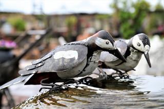 ציפורים לנוי מברזל