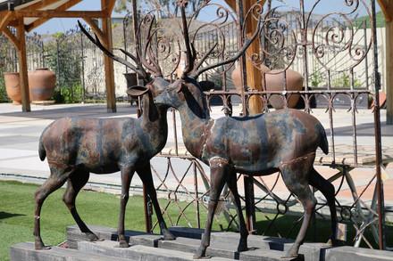פסל אילים מברזל