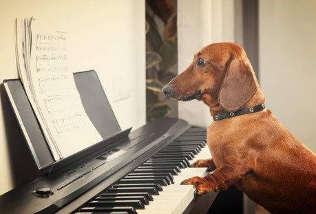 12 Tips to Supercharge Your Piano Sight Reading