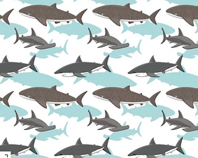 shark attack.png