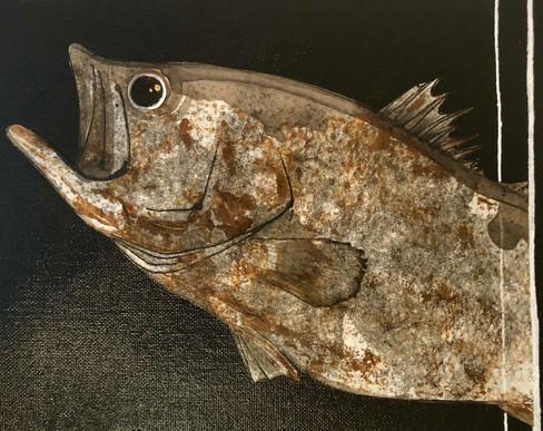 """16"""" Largemouth Bass"""