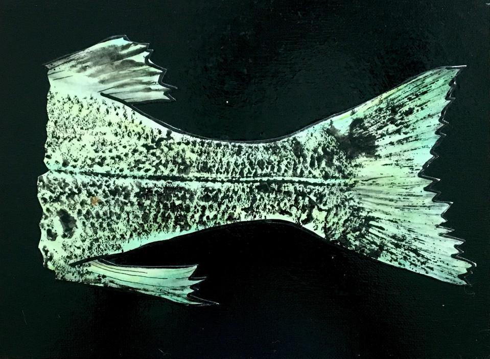 Largemouth Bass Tail