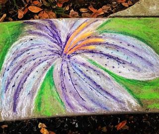 Sidewalk Lily 1 🙂 #chalk #chalkart #chalkitup #sidewalk #sidewalkchalk #sidewalkart #art #makeitnice #makeitprettierwithflowers #flowers #li