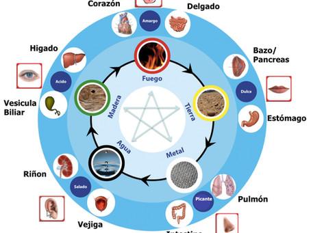 DIAGNOSTICO ORIENTAL DE LAS EMOCIONES 5 ELEMENTOS o REINOS