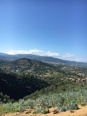 Une production avec vue sur les montagnes