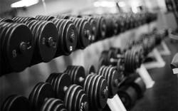 468751-weights