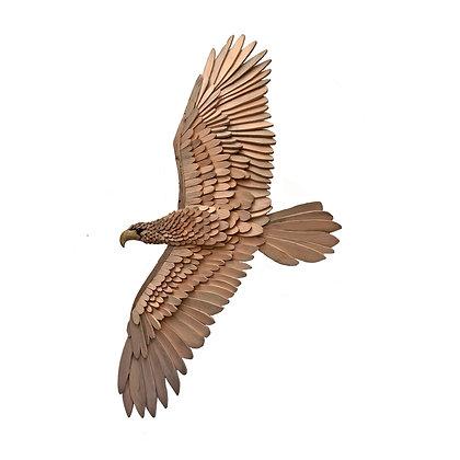 """""""Spread Wing Eagle"""" by Kelley Jepson"""